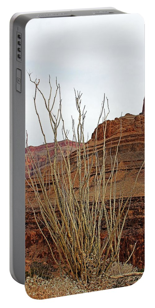 Cactus Portable Battery Charger featuring the photograph Jacob's Staff Grand Canyon by Debbie Oppermann