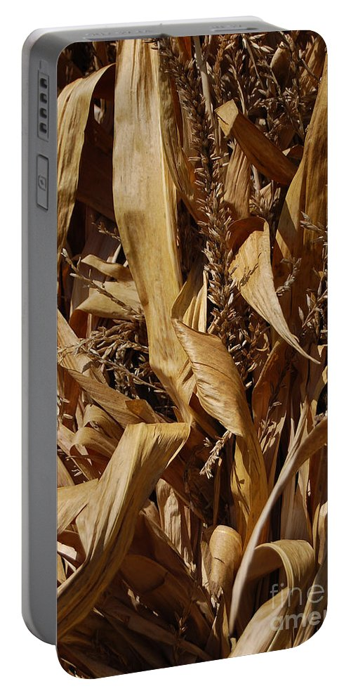 Fall Portable Battery Charger featuring the photograph Jammer Corn Abstract 001 by First Star Art
