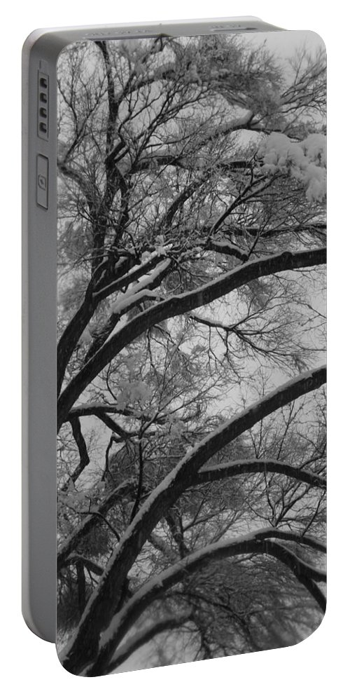 Black And White Photography Portable Battery Charger featuring the photograph January Tree by Kirk Griffith