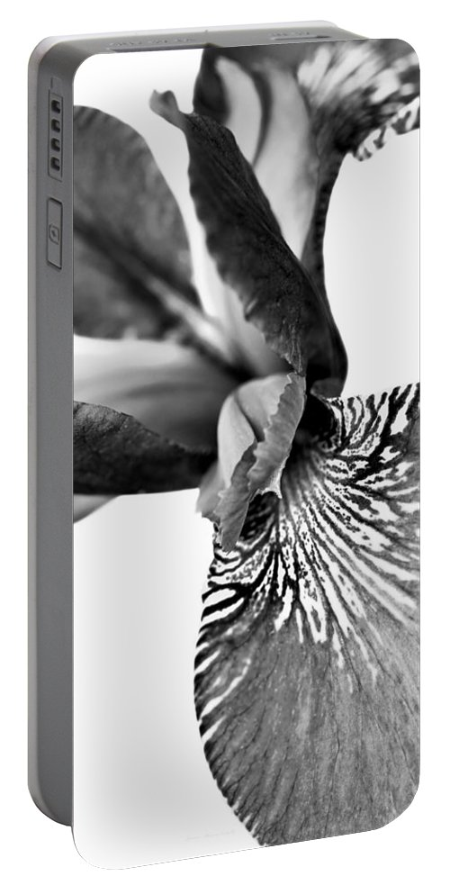 Iris Portable Battery Charger featuring the photograph Japanese Iris Flower Monochrome 2 by Jennie Marie Schell