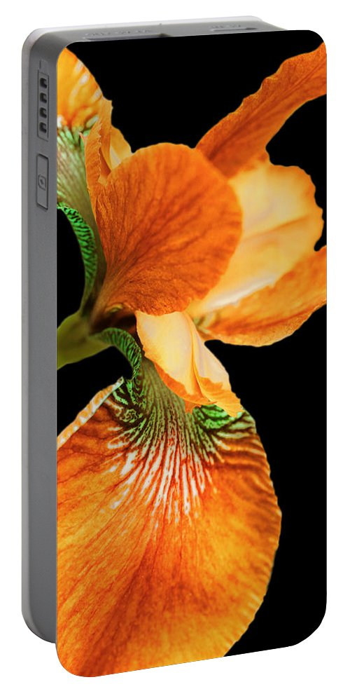 Iris Portable Battery Charger featuring the photograph Japanese Iris Orange Black by Jennie Marie Schell
