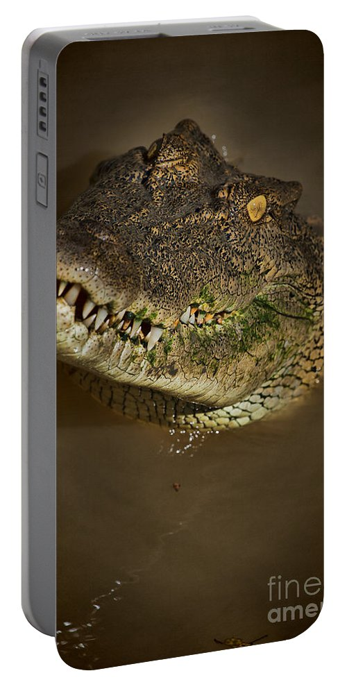 Salt Water Crocodile Portable Battery Charger featuring the photograph Jaws V6 by Douglas Barnard