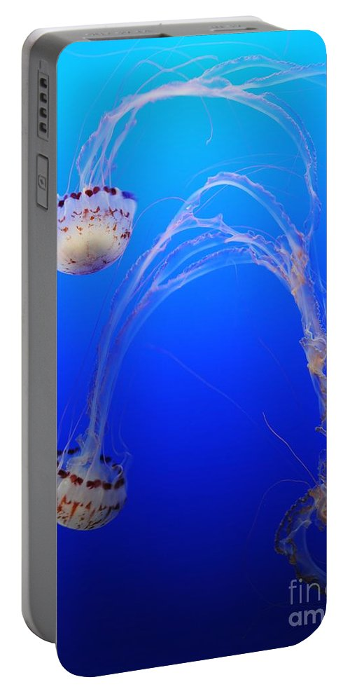 Marine Portable Battery Charger featuring the photograph Jellyfish 1 by Vivian Christopher