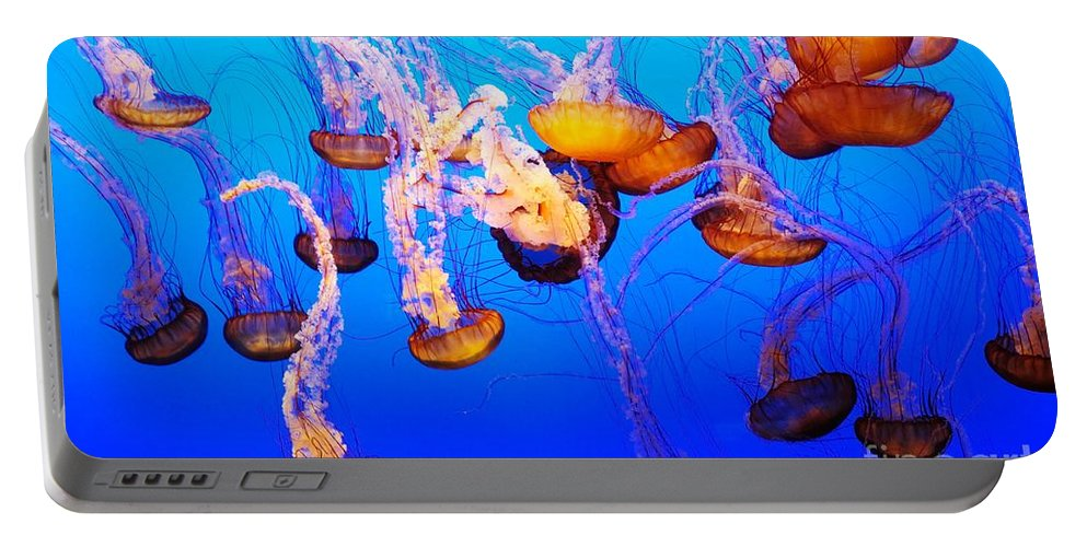 Marine Portable Battery Charger featuring the photograph Jellyfish In Abundance by Vivian Christopher