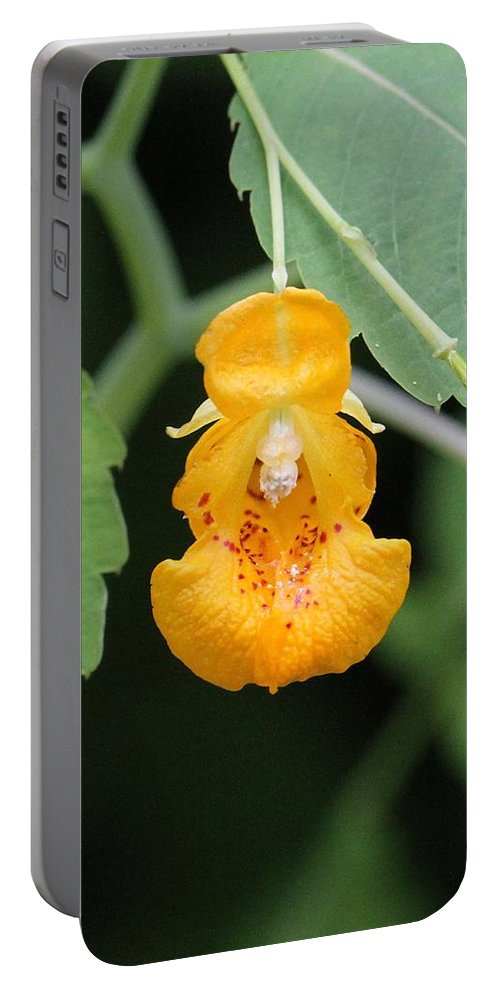 Jewel Weed Portable Battery Charger featuring the photograph Jewel Weed Blossom by Doris Potter