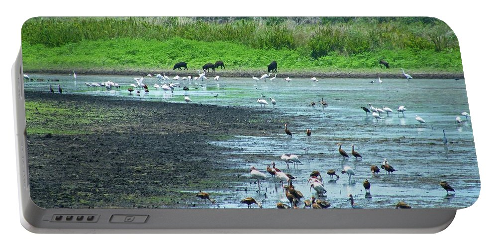 Wildlife Portable Battery Charger featuring the photograph Jones Pond Aransas Nwr Texas by Lizi Beard-Ward
