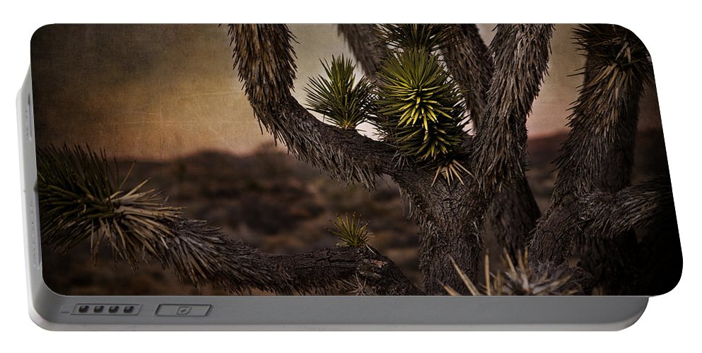 Evie Portable Battery Charger featuring the photograph Joshua Tree In Mojave National Preserve by Evie Carrier