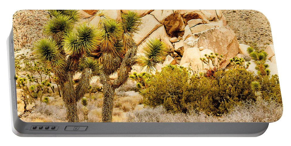 California Portable Battery Charger featuring the photograph Joshua Tree National Park Skull Rock by Bob and Nadine Johnston