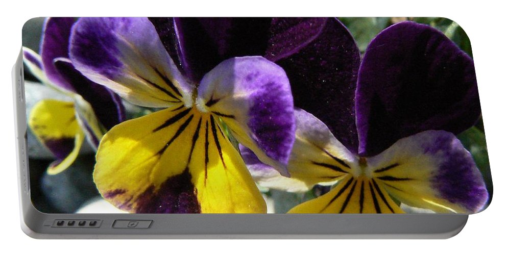 Pansy Portable Battery Charger featuring the photograph Jump Up And Kiss Me by Barbara St Jean