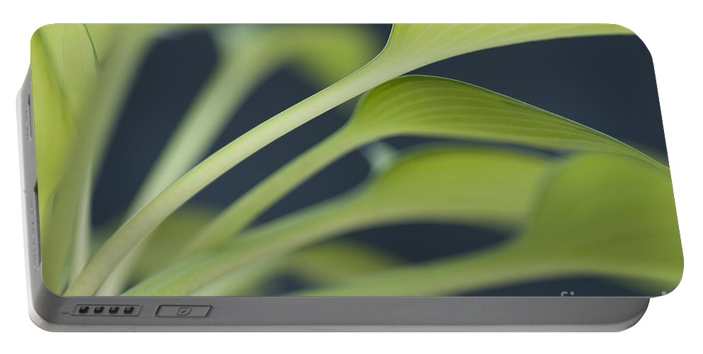 June Plantain Lily Portable Battery Charger featuring the photograph June Plantain Lily Close Ups by Jim Corwin