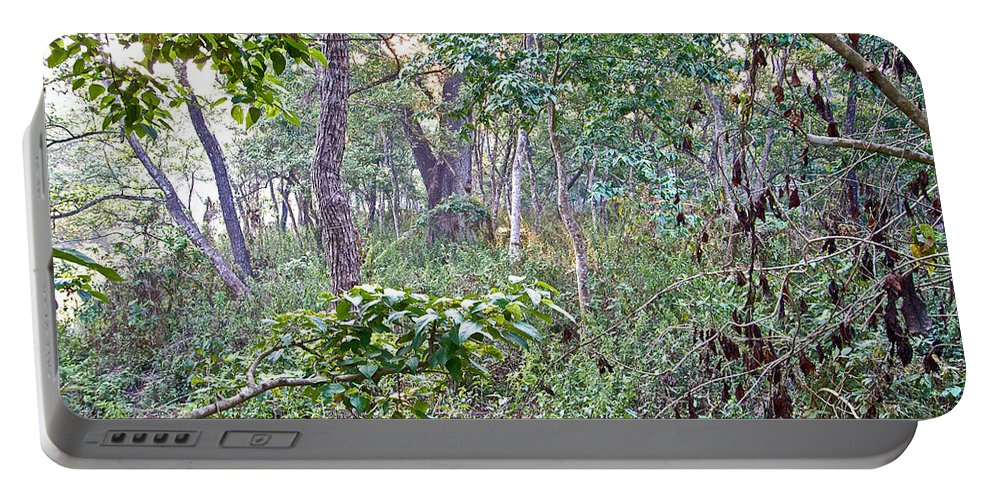 Jungle Forest In Chitwan National Park In Nepal Portable Battery Charger featuring the photograph Jungle Forest In Chitwan Np-nepal by Ruth Hager