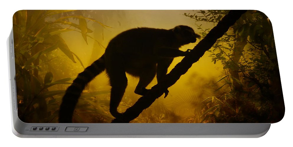 Alert Portable Battery Charger featuring the photograph Jungle by TouTouke A Y