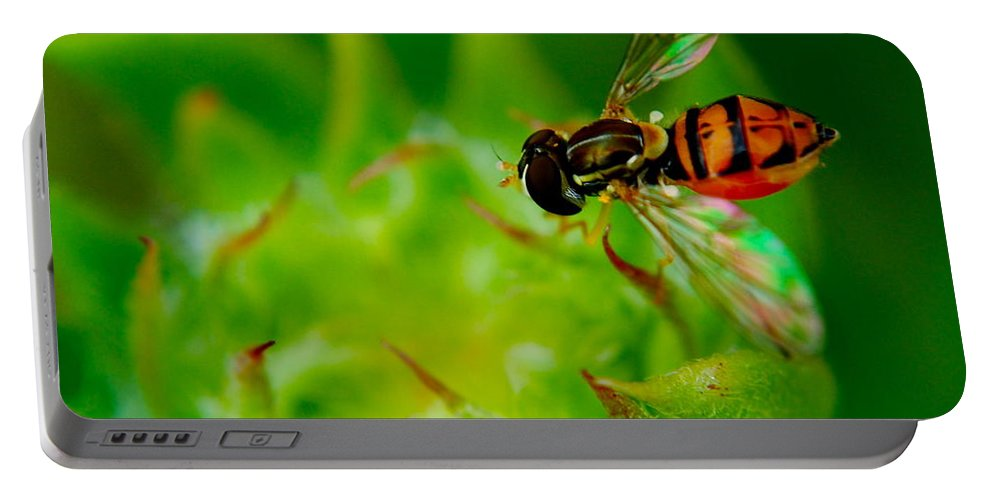 Bee Portable Battery Charger featuring the photograph Just Beecause by Frozen in Time Fine Art Photography