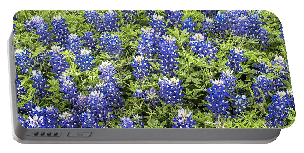 Bluebonnet Portable Battery Charger featuring the photograph Just Bluebonnets by David and Carol Kelly