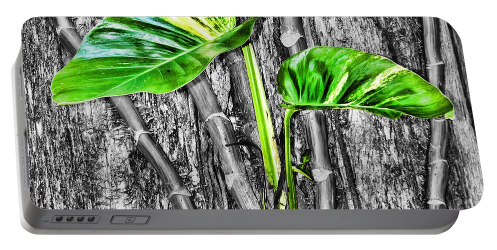 Green Leaves Portable Battery Charger featuring the photograph Just Green 2 By Diana Sainz by Diana Raquel Sainz