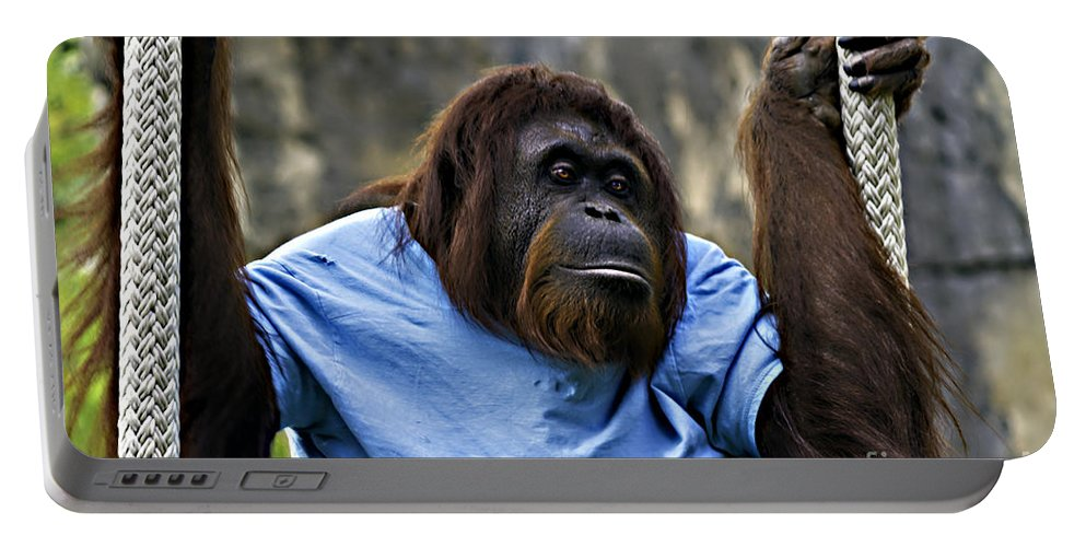 Chimpanzee Portable Battery Charger featuring the photograph Just Hanging Around by Ken Frischkorn