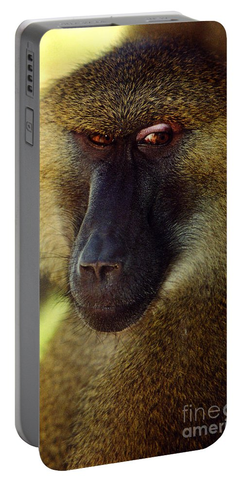 Babboon Portable Battery Charger featuring the photograph Kc Babboon 2 by Gary Gingrich Galleries