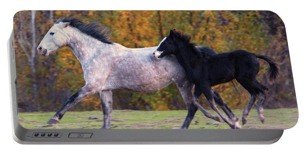 Mustang Portable Battery Charger featuring the photograph Keeping Up by Mike Dawson