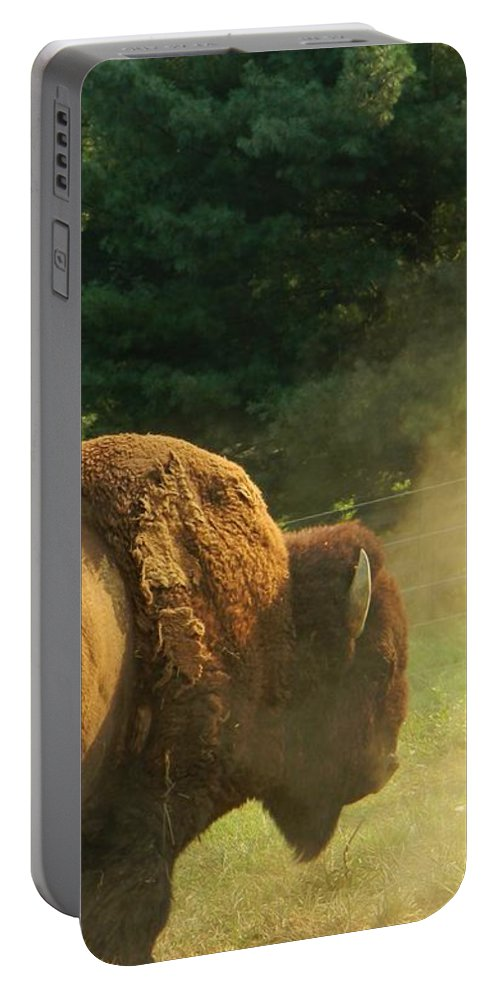 Buffalo Portable Battery Charger featuring the photograph Kicking Up Dust by Jean Goodwin Brooks
