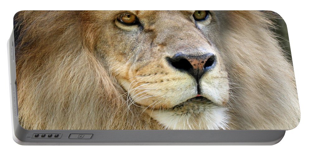 Lion Portable Battery Charger featuring the photograph King Of The Beasts by Jackson Pearson
