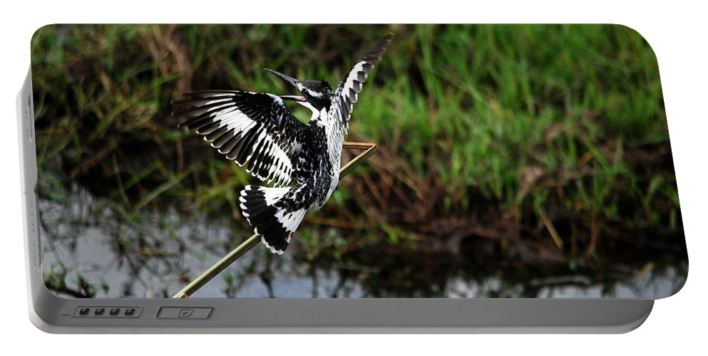 Flight Portable Battery Charger featuring the photograph Kingfisher by Pamela Peters