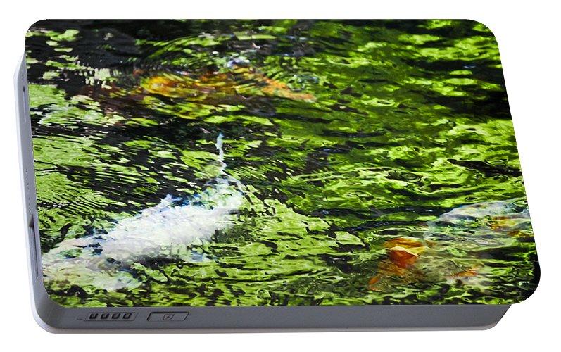 Koi pond portable battery charger for sale by christi kraft for Portable koi pond