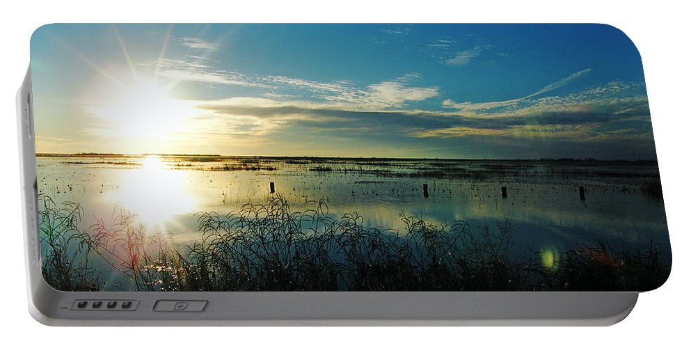 Lacassine Portable Battery Charger featuring the photograph Lacassine Afternoon Sparkle by Lizi Beard-Ward