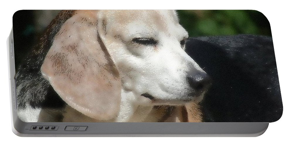 Dog Portable Battery Charger featuring the photograph Lady 12 by April Patterson
