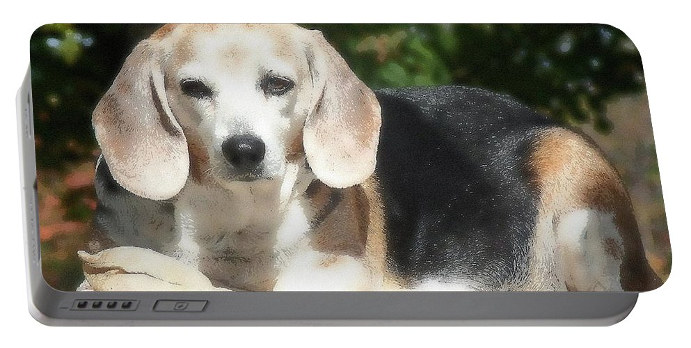 Dog Portable Battery Charger featuring the photograph Lady 20 by April Patterson
