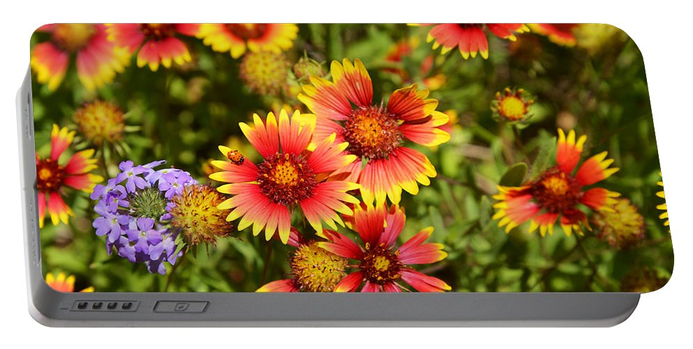 Lady Portable Battery Charger featuring the photograph Lady Bird And Her Flowers by Lynn Bauer