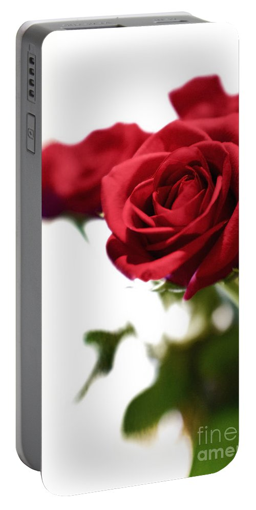 Rose Portable Battery Charger featuring the photograph Lady In Red by Scott Pellegrin