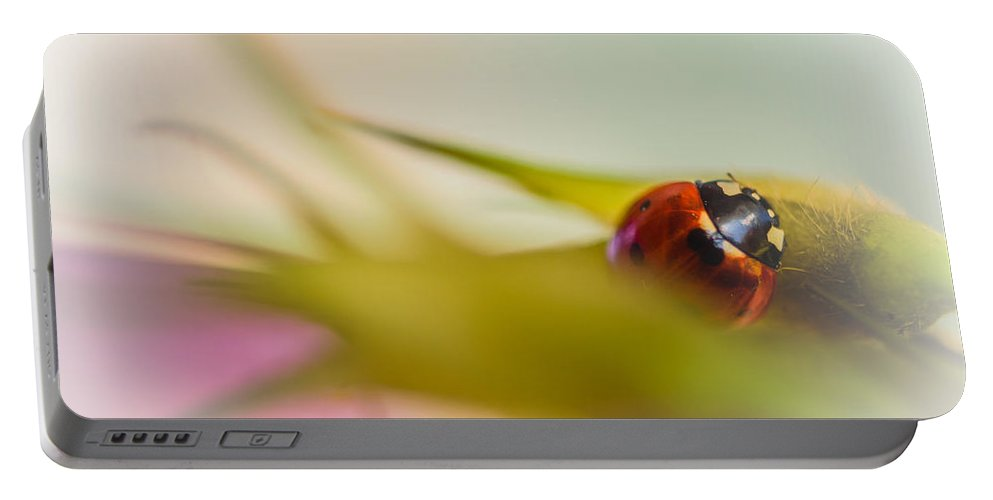 Red Portable Battery Charger featuring the photograph Ladybug II by Marco Oliveira