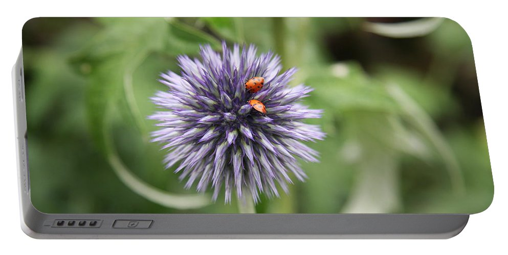 Flower Portable Battery Charger featuring the photograph Ladybugs by Christiane Schulze Art And Photography