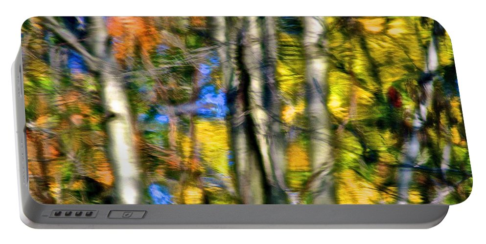 Landscape Portable Battery Charger featuring the photograph Lake Forest by Frozen in Time Fine Art Photography