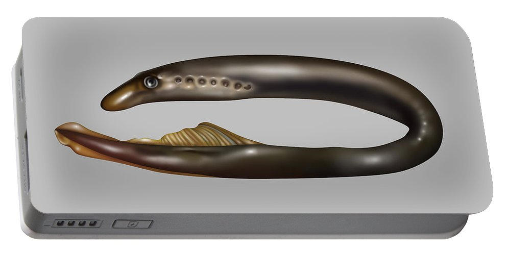 Nature Portable Battery Charger featuring the photograph Lamprey Eel, Illustration by Gwen Shockey