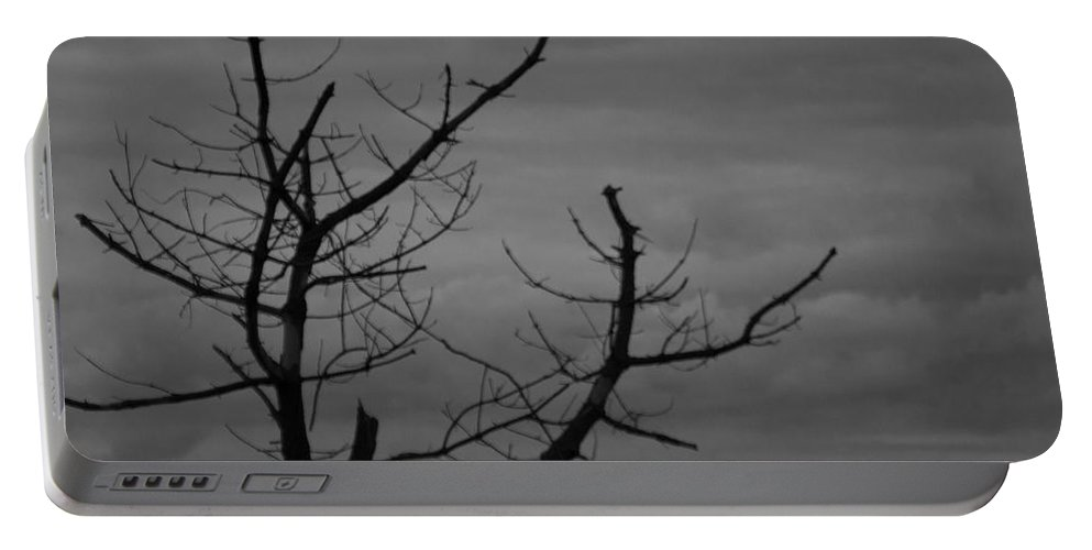 Tree Portable Battery Charger featuring the photograph Perch by Ray Konopaske