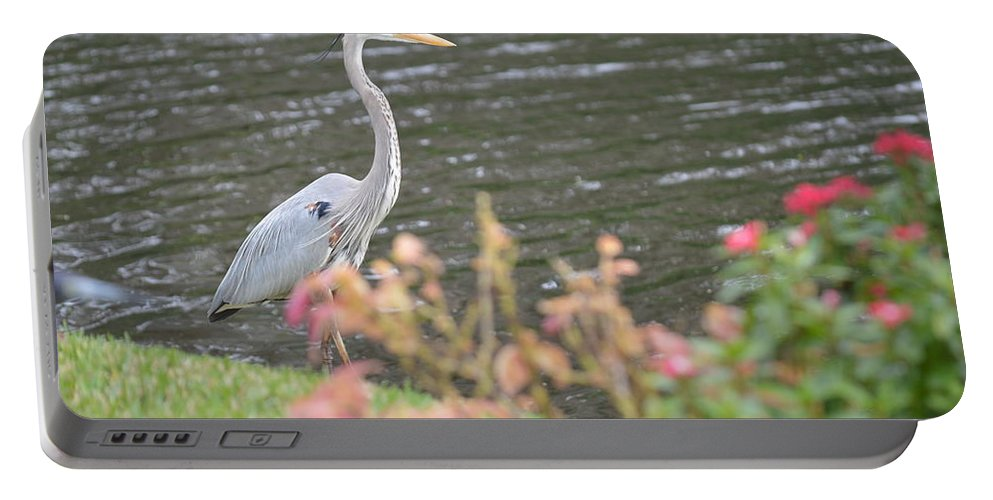 Florida Portable Battery Charger featuring the photograph Large Bird by Linda Kerkau