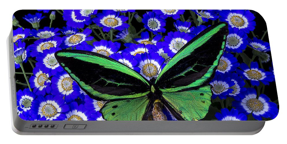 Blue Portable Battery Charger featuring the photograph Large Green Butterfly by Garry Gay