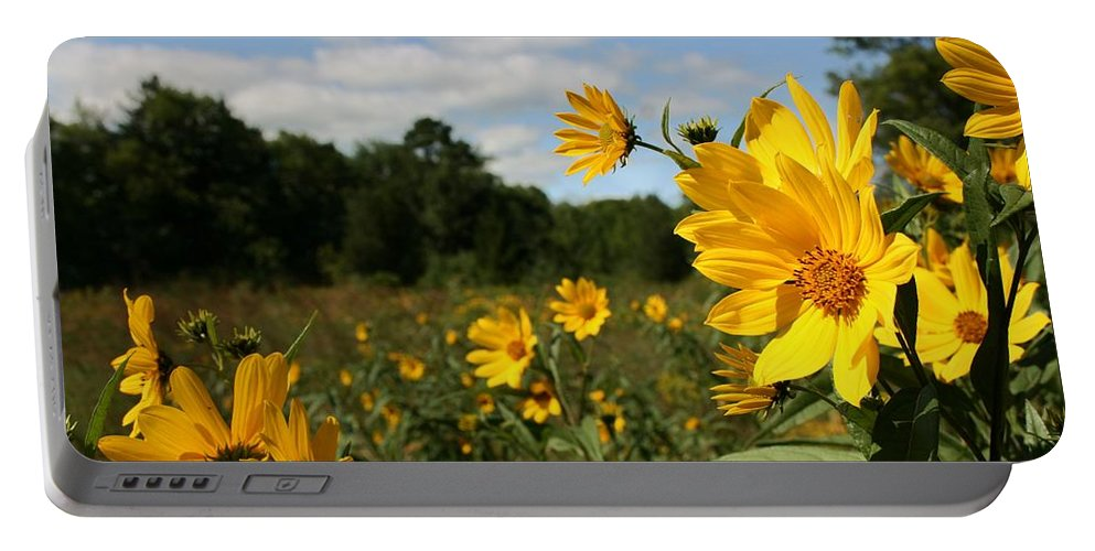 Schlitz Audubon Nature Center Portable Battery Charger featuring the photograph Last Days Of Summer by Susan McMenamin