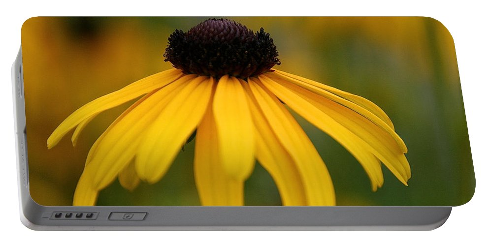 Flower Portable Battery Charger featuring the photograph Late Summer Blooms by Susan Herber