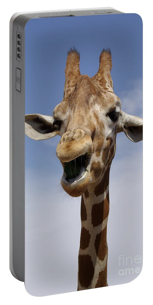 Laugh Portable Battery Charger featuring the photograph Laughing Giraffe by Jim And Emily Bush