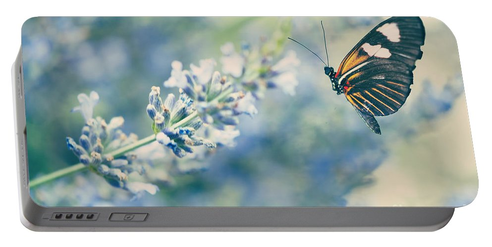 Antennae Portable Battery Charger featuring the photograph Lavender And The Butterfly by Juli Scalzi
