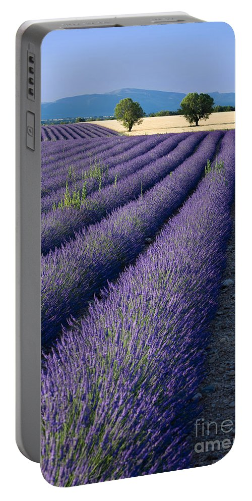 Lavender Portable Battery Charger featuring the photograph Lavender Fields by Brian Jannsen