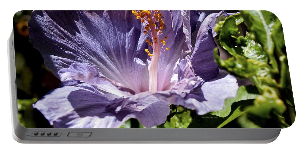 Fine Art Photography Portable Battery Charger featuring the photograph Lavender Hibiscus by Patricia Griffin Brett