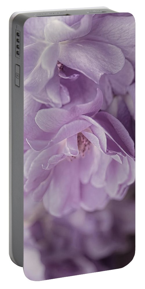 Rose Portable Battery Charger featuring the photograph Lavender Purple Roses Rhapsody by Jennie Marie Schell