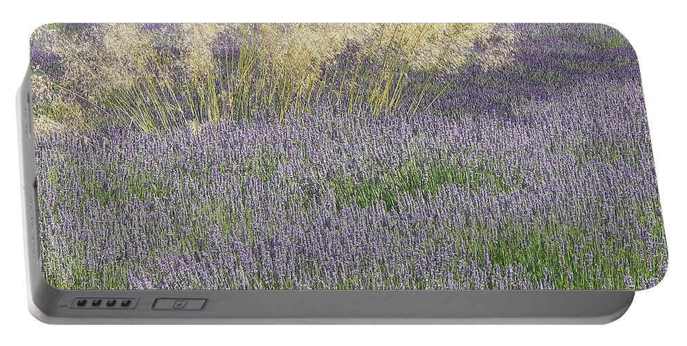 California Portable Battery Charger featuring the photograph Lavender by Steve Ondrus