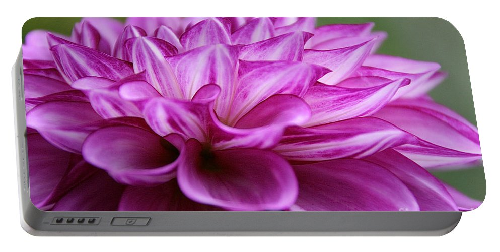 Flower Portable Battery Charger featuring the photograph Layered by Susan Herber