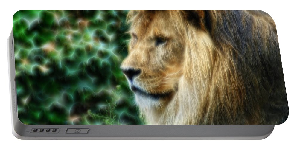 Lion Portable Battery Charger featuring the photograph Lazy Boy Day Dream At The Buffalo Zoo by Michael Frank Jr