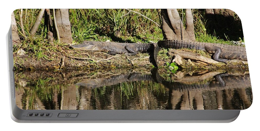 Gator Portable Battery Charger featuring the photograph Lazy Day by Chuck Hicks