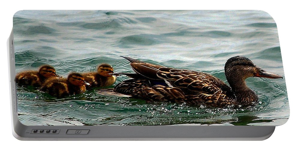 Portable Battery Charger featuring the photograph Leading The Way by Kim Blaylock